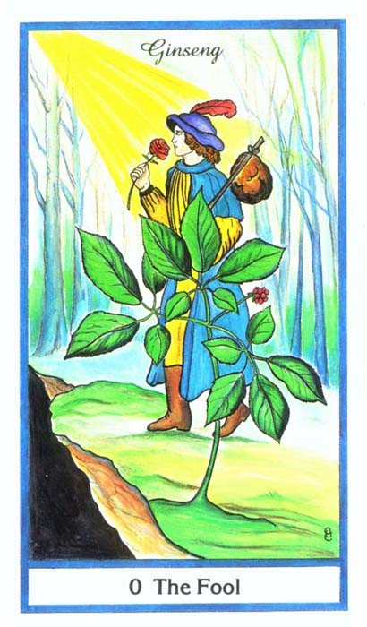 herbal Tarot Cards